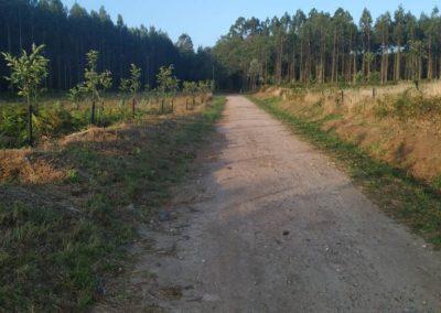 etapa 5 camino de santiago 09