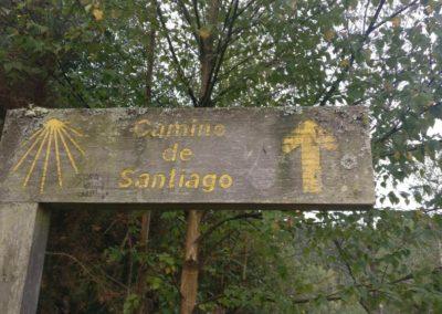 Etapa 11 Camino de Santiago 09